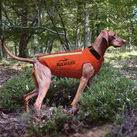 Chaleco anti pincho para perros de caza