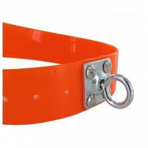 collar de biothane 3,8 original con quitavueltas naranja