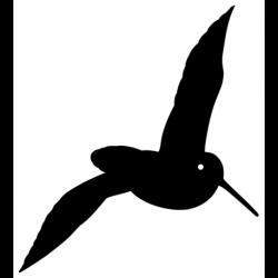 pegatina de arcea o becada volando