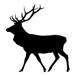Pegatina de gran venado o ciervo caminando