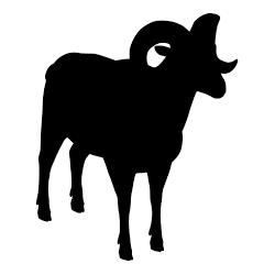 Pegatina de muflón
